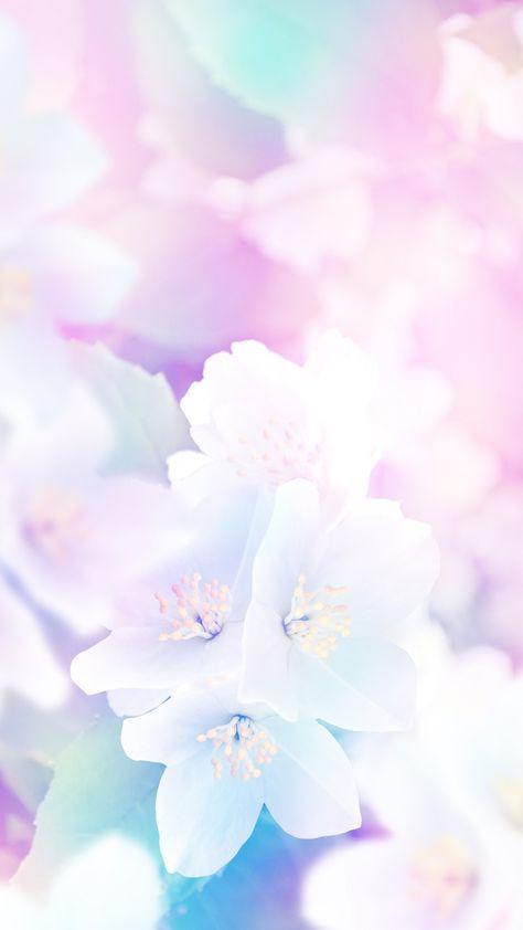 Вертикальные картинки с нежными цветами