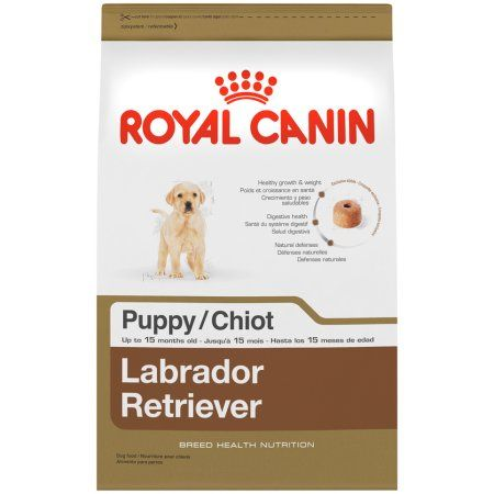 Pets Dry Dog Food Retriever Puppy Puppy Food