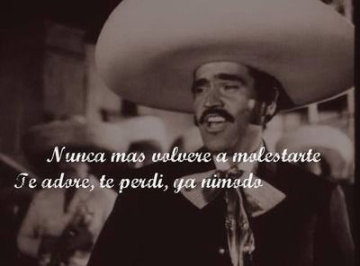 Pin By Betty Muñoz On Méxicoenlapiel Vicente Fernández Heritage Quotes Song Quotes