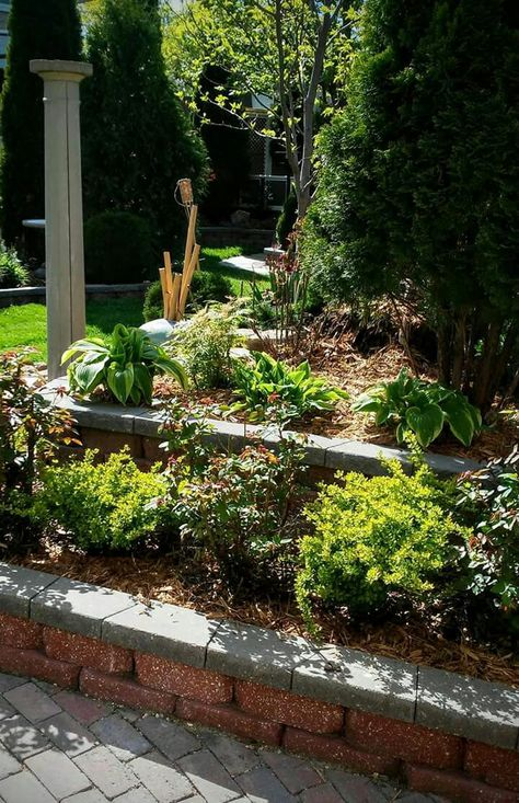 Pin By Eve Jugomae On Aed Plants Garden