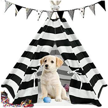 Amazon Com Ukadou Dog Teepee Tent For Dogs Cat Teepee Cotton Canvas Fabric Pet Teepee Houses Wit In 2020 Pet Teepee Dog Teepee Cat Teepee