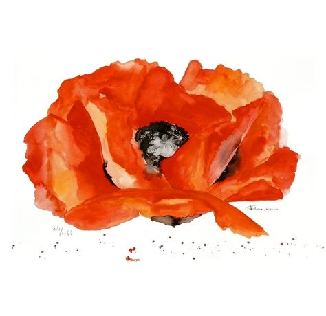LOVE _ This poppy painting would brighten any room.