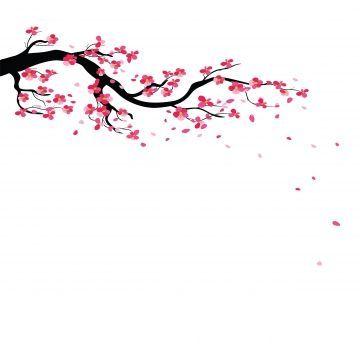 Background Blossom Branches Cherry Frame Sakura Tree Watercolor Sakura Blossom Hand Cherry Blossom Art Cherry Blossom Drawing Cherry Blossom Painting