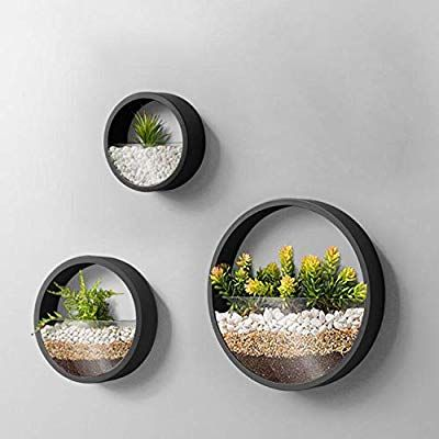 Amazon Com 3 Pack Set Wall Planters Modern Round Glass Wall Planter Succulent Planter Circle Iron Hanging Planter Vase For Herb S