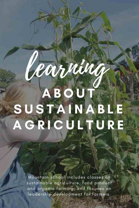 Learning About Sustainable Agriculture - Farm & Garden - GRIT Magazine