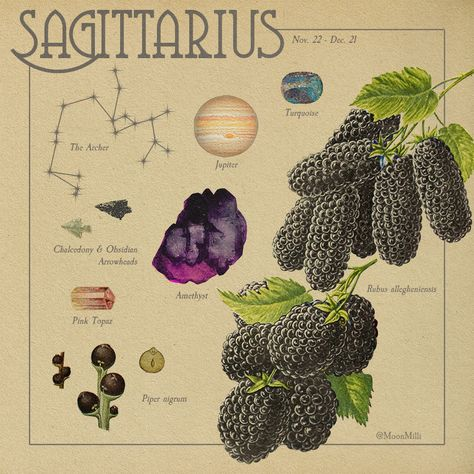 Room Posters, Poster Wall, Poster Prints, Zodiac Art, Zodiac Signs, Sagittarius Zodiac, Pink Topaz, Old Images, Picture Wall