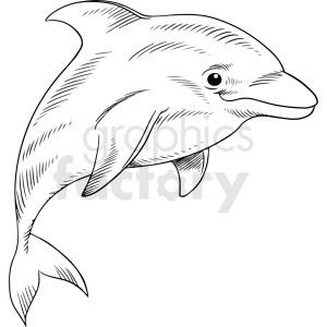 13++ Swimming dolphin clipart black and white ideas