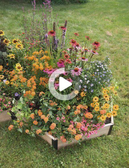 Pin On Garten Ideen Gemuse In 2020 Pollinator Garden Design Garden Design Plans Garden Design Layout