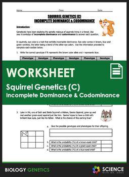 Incomplete Dominance Worksheet - worksheet