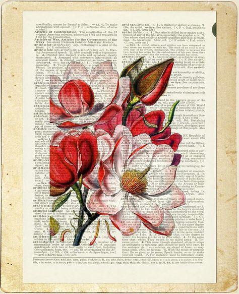 Magnolie-Wörterbuch-Seite drucken