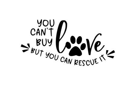 Can't Buy Love But You Can Rescue It Vinyl Decal / Sticker You Can't Buy Love But you can Rescue It - Great vinyl decal promoting pet adoption. Checkout You Can't Buy Love But you can Rescue It - Great vinyl decal promoting pet adoption. Rescue Dog Quotes, Adoption Quotes, Rescue Dogs, Pet Adoption, Pet Quotes, Cute Dog Quotes, Animal Adoption, Friend Quotes, Maila