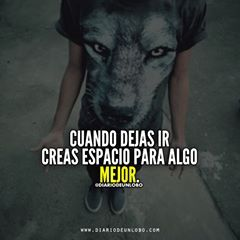 Diariodeunlobo Frases Ifrases Quotes Lobos Wolves