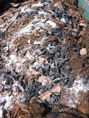 4 生ゴミ堆肥で土作り 堆肥 土作り プランター