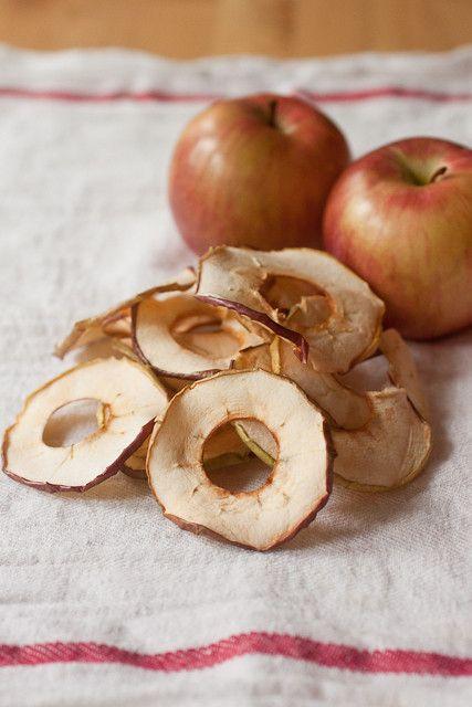Diy Dried Apple Rings Dried Apple Rings Dried Apples Apple Rings