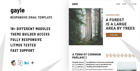 Gayle– Responsive Email + StampReady Builder by ThemesCode