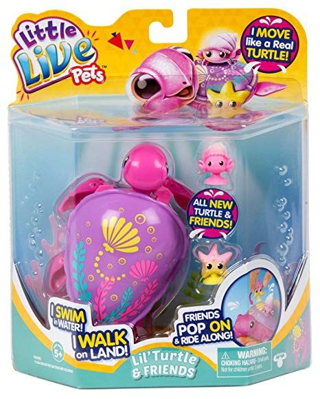 Amazon Com Little Live Pets S6 Turtle Single Pack Sandy The