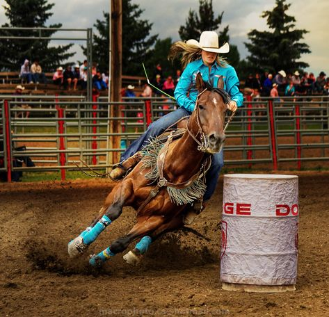 ITAP of some colorful barrel racingget your own photography kit now Barrel Racing Outfits, Barrel Racing Tips, Barrel Racing Saddles, Barrel Racing Horses, Barrel Horse, Foto Cowgirl, Western Pleasure Horses, Horse Show Clothes, Rodeo Life