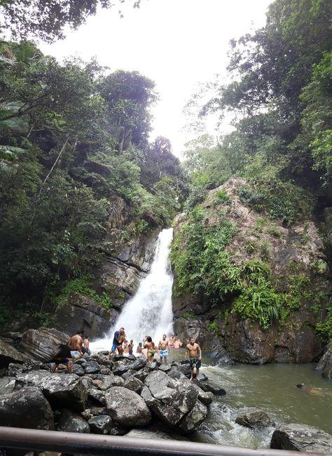 La Coca Falls in the El Yunque National Forest in Puerto Rico. [31844368]