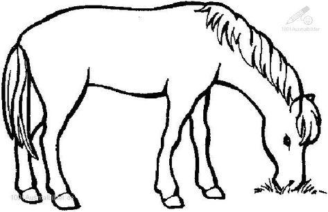 1001 Ausmalbilder Tiere Pferde Ausmalbild Pferd In 2020