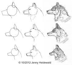 Verwonderend Drawing wolf skull google 41+ ideas for 2019 LM-73