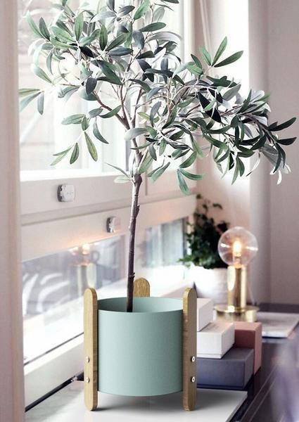 Jessamy Modern Nordic Stake Frame Planter In 2020 Indoor Olive Tree Indoor Tree Plants Eucalyptus Plant Indoor