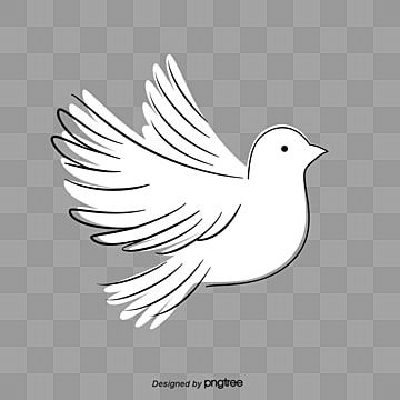 Working For Peace And Harmony Free Background Pictures White Doves Bird