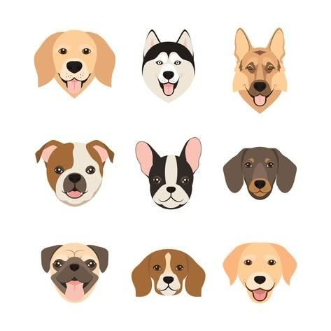 Flat Style Dog Head Icons Cartoon Dogs Faces Set Vector Illustration Isolated On White Art Print Dar Ria Art Com In 2021 Dog Design Art Dog Face Drawing Dog Illustration