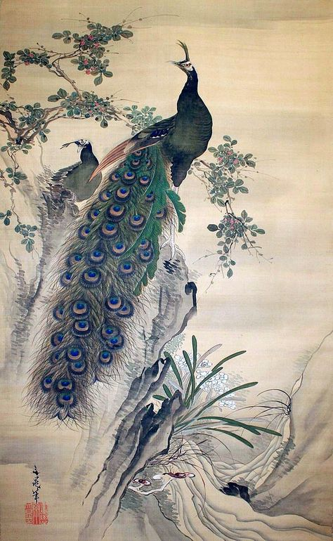 Peacock By Tani Bunchō 谷文晁 1763 1841 Peacock Artwork