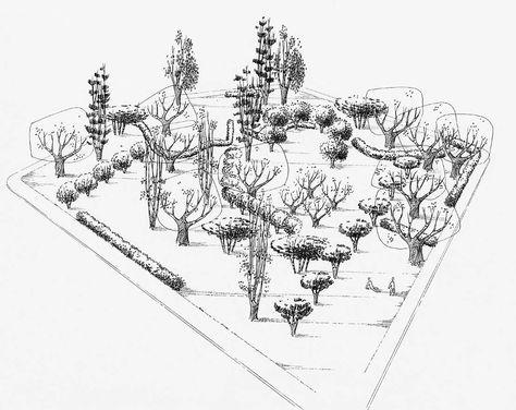Landscape Plan Drawings Garrett Eckbo