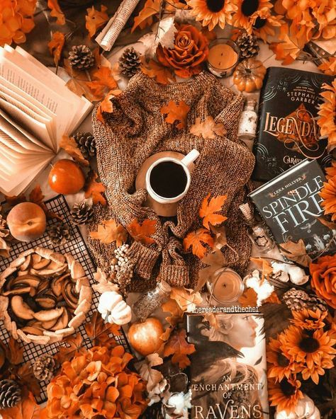 Foliage Trees On Halloween 2020 cozy fall vibes in 2020 | Fall vibes, Cozy fall, Fall