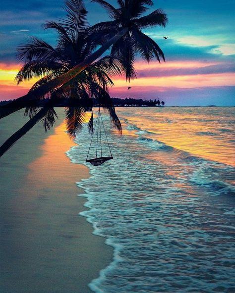 🌴 Tropical paradise🌴