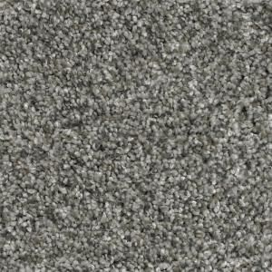 Home Decorators Collection Trendy Threads Ii Color Classy Texture 12 Ft Carpet H0104 197 1200 The Home Depot Home Decorators Collection Classy Carpet Home Depot Carpet