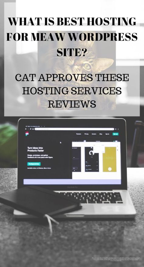 Webhosting prices could be influenced through numerous different concerns. It is - Host your clients website by choosing the Reseller Hosting #resellerhosting #hosting #webhosting -