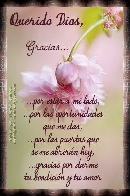 Frases De La Mañana Frases Agradecimiento A Dios Frases