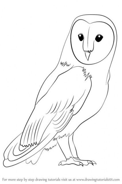 16 Ideas Drawing Step By Step Owl Owl Drawing Simple Owls Drawing Bird Drawings