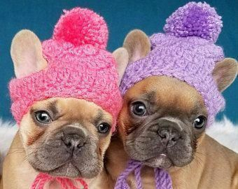 design senza tempo prezzo competitivo design senza tempo Small Puppy Dog Holiday Knit Crochet Hats, beanie toque pompom ...