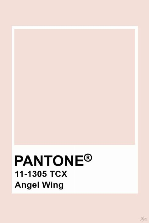 Pantone Angel Wing