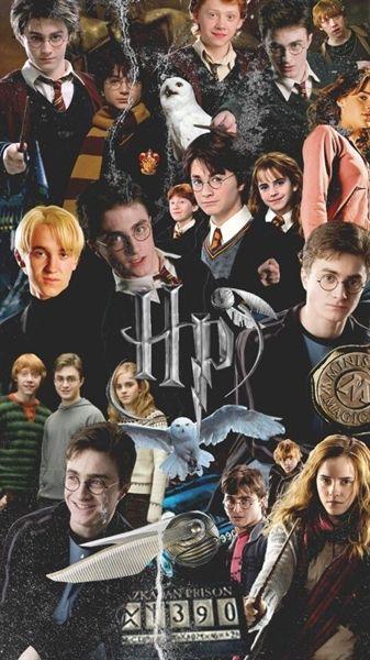 História Imagines Harry Potter livro 2