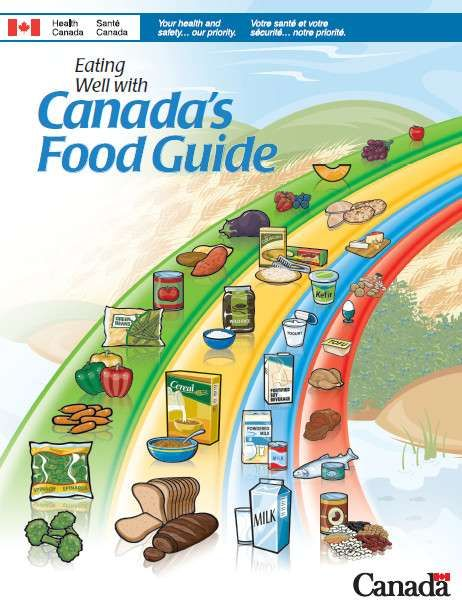 Got Milk Not So Much Health Canada S New Food Guide Drops Milk And Alternatives And Favours Plant Based Protein Canada Food Guide Canada Food Food Guide