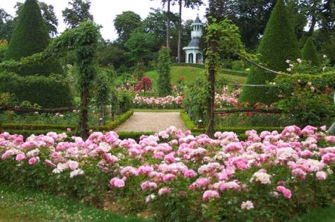 Jardin De Bagatelle From A Perfect Day In My Life Jardins