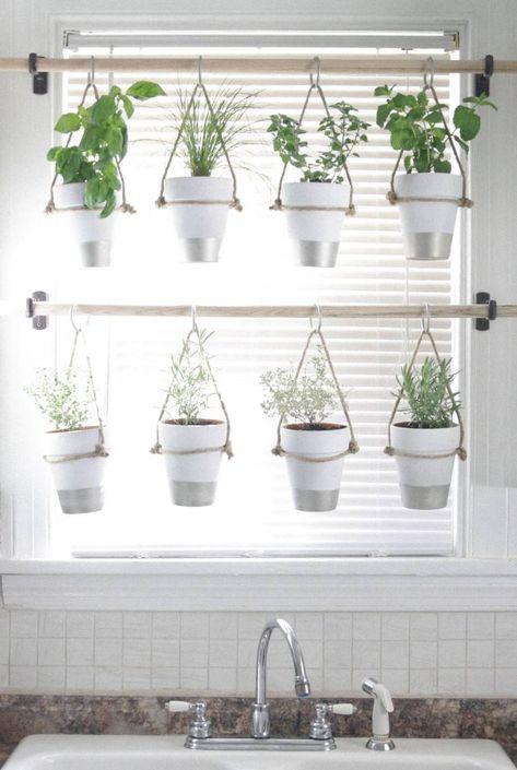 Comment Cultiver Des Plantes Aromatiques Dans La Cuisine Herbes