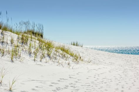 4 Exciting Things to Do When You Visit Miramar Beach