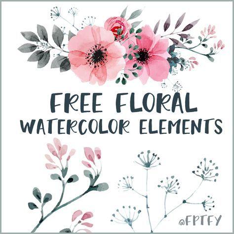 Free Watercolor Floral Elements Blumen Vorlage Blumen Logo Und
