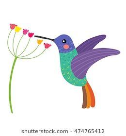 Image Result For Hummingbird Cartoon Picaflores Aves Vector