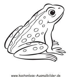Pin Auf Tiere Malen Frosch
