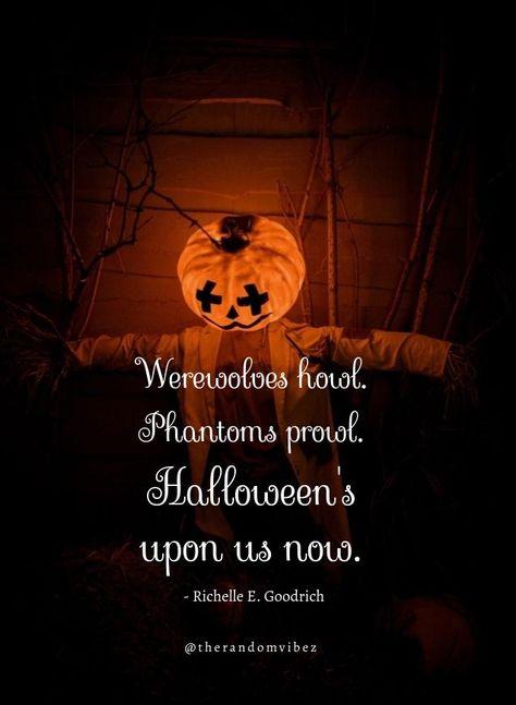 Werewolves howl. Phantoms prowl. Halloween's upon us now. - Richelle E. Goodrich #Halloweenquotes #Happyhalloweenquotes #Scaryhalloweenquotes #Disneyhalloweenquotes #Halloweencatchphrases #Coolhalloweenquotes #Halloweentagline #Halloweencaptions #Spookyhalloweenquotes #Funnyhalloweenquotes #Halloweenmemes #Halloweenwishes #Happyhalloweenwishes #2021Halloween #Halloween2021quotes #Halloweennightquotes #Scaryhalloweennightquotes #Halloweenevequotes #Halloweenpartyimages #therandomvibez
