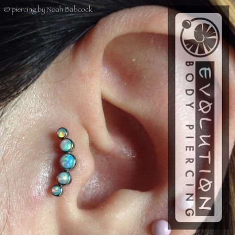 noahbabcock: Healed #tragus piercing with #opal and #titanium jewelry by #anatometal (at Evolution Piercing)