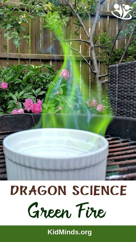 Dragon Science: Green Fire Experiment – KidMinds Experiment for lovers of all ages. Make a Green Fire in your backyard. Summer Science, Science Activities For Kids, Preschool Science, Science Classroom, Science Fair, Science For Kids, Stem Activities, Learn Science, Science Chemistry