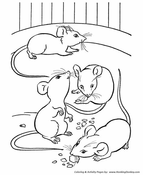 0dd df0f17a f1fbd7a animal coloring pages coloring books