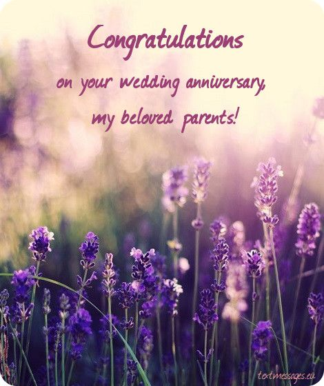Wedding Anniversary Card For Parents Anniversary Wishes For Parents Wedding Anniversary Wishes Anniversary Quotes For Parents